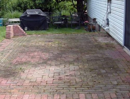 How Do I Get Rid of Moss on My Pavers?