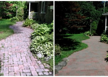 These lovely pavers were hiding beneath dirt and weeds