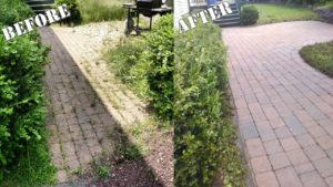 Why You Shouldn't Use Weed Killer On Your Paver Patio